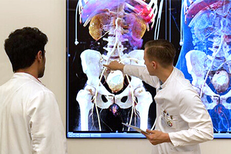Two radiologists stand in front of a smart board and view radiological images in 3D