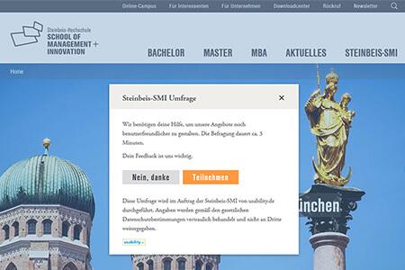 Einstieg in die Onsite-Befragung auf der Steinbeis SMI Website