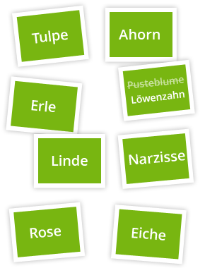 Card Sorting Benennung optimieren