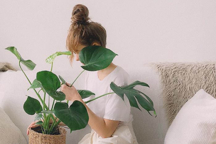 Eine Frau sitzt mit einer Grünpflanze auf dem Schoß auf der Couch